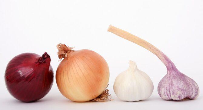 Toxic onions and garlic